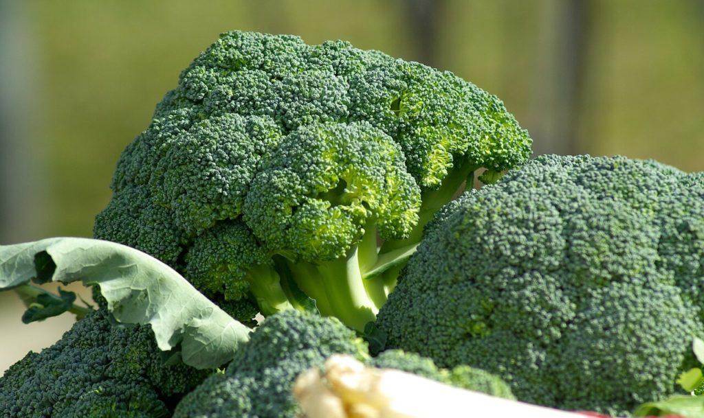 gribe ne iyi gelir brokoli