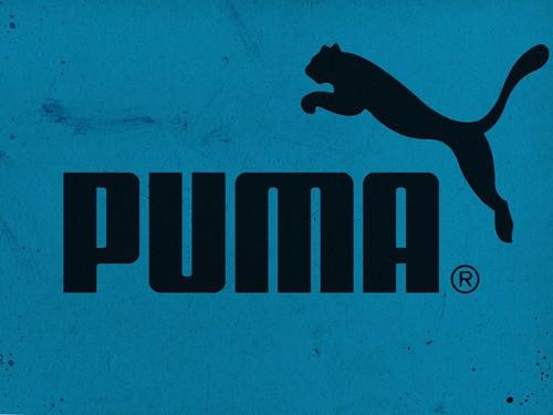 Puma en iyi spor ayakkabı markası
